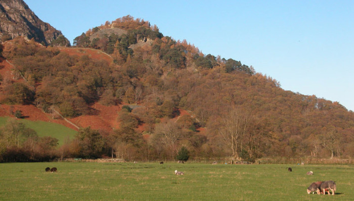 Castle Crag from the valley